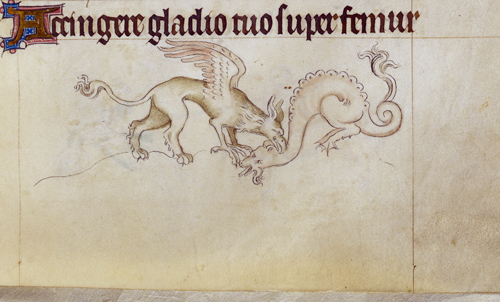 Griffin and dragon