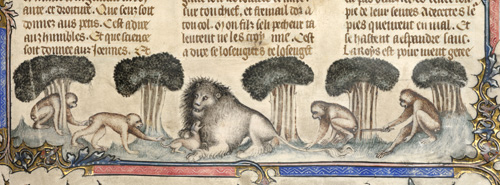 Lion, dog and four apes