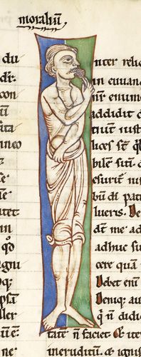 Anthropomorphic initial