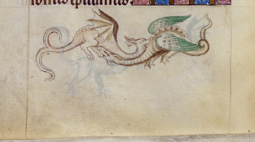 Grotesque dragons