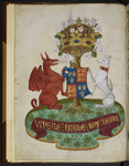 Arms of Henry VII