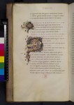 Illuminated and historiated initials