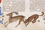 Detail of a page: miniature of a dog attacking a deer in ...