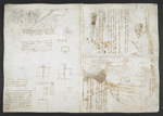 f. 39v, displayed as an open bifolium with f. 36: notes and schematic sketches