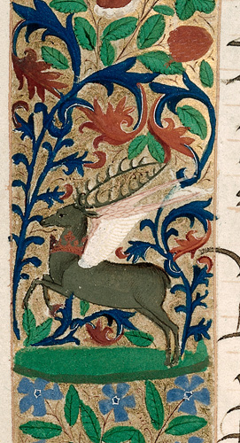 Stag with wings