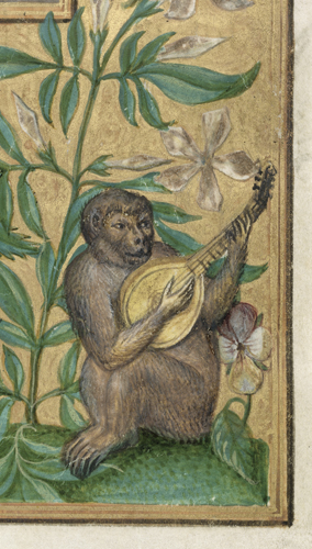 Monkey playing lute