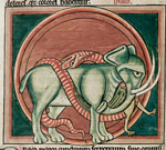 Dragon and elephant