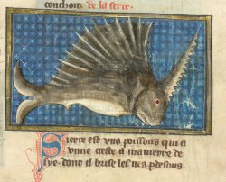 Yates Thompson MS 19, f. 48