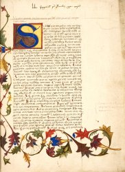 Stylized acanthus leaves, Harley MS 3729, f. 1