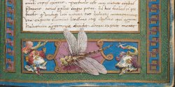 Emblems of the Visconti family, on either side of the dragonfly, Burney MS 132, f. 2