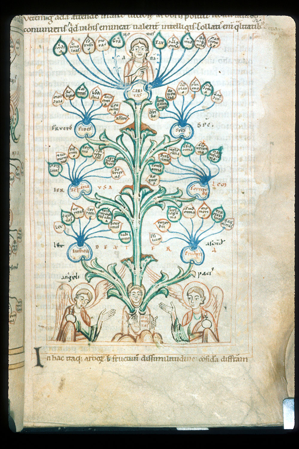 Tree of Virtues