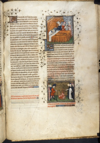 Birth of Louis, and burning of books