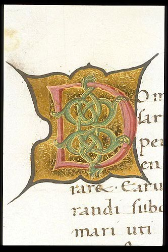 Interlace initial