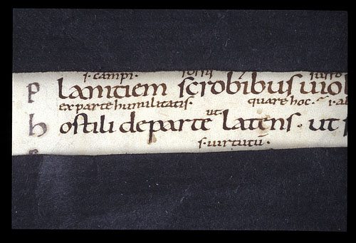 Detail of text and interlinear glosses