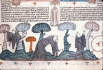 Three monks searching