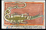 Hydra and crocodile