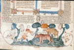 Man attacking a boar and a bear