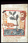 Drawing of king Arthur finding a giant roasting a pig.