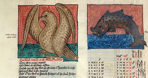 Eagle and Dolphin