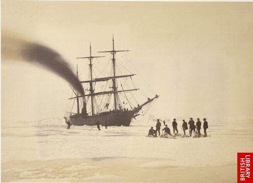 Hunting by steam in Melville Bay.