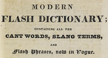 Evolving English: One Language, Many Voices (British Library)