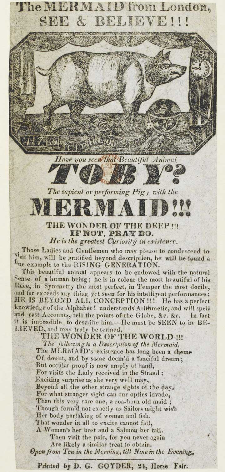 Exhibition poster for 'The mermaid from London' and 'Toby, the Performing Pig', c.1823