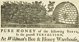 Advertisement for 'Wildman's Bee and Honey Warehouse',  1790