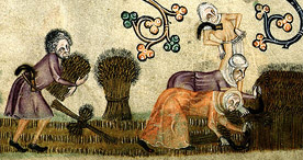 Detail of medieval workers reap and bind sheaves