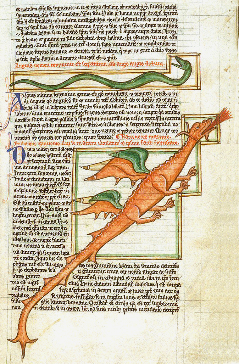 Dragon, Harley 3244 f.59, c.1250-1300