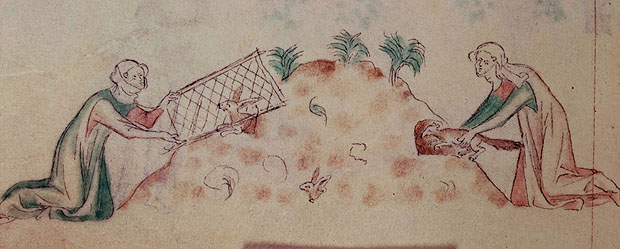 Women hunting rabbits, Royal 2 B VII f.155v, c.1310-1320