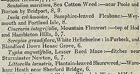 The Scientific Tourist - Sea Cotton and Moonwort p.126