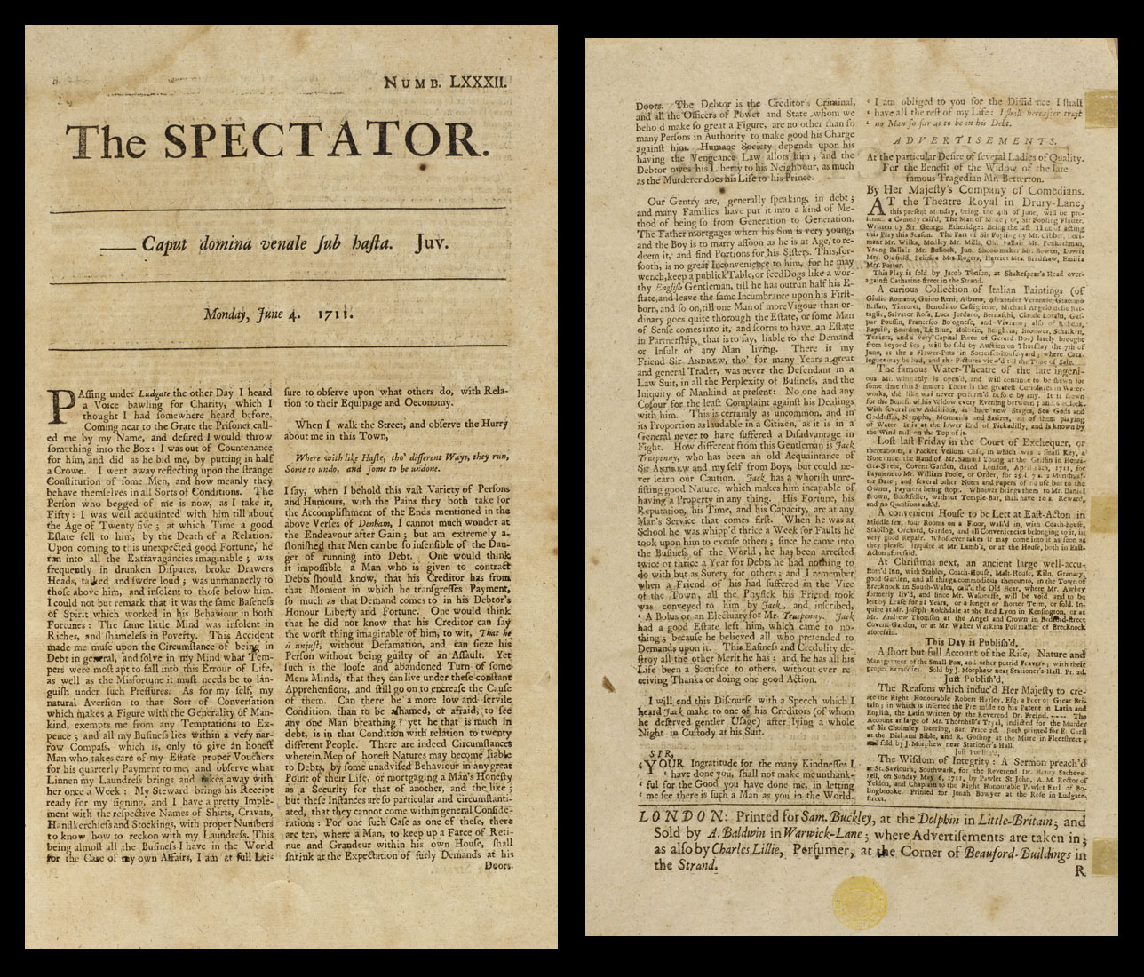 the spectator image