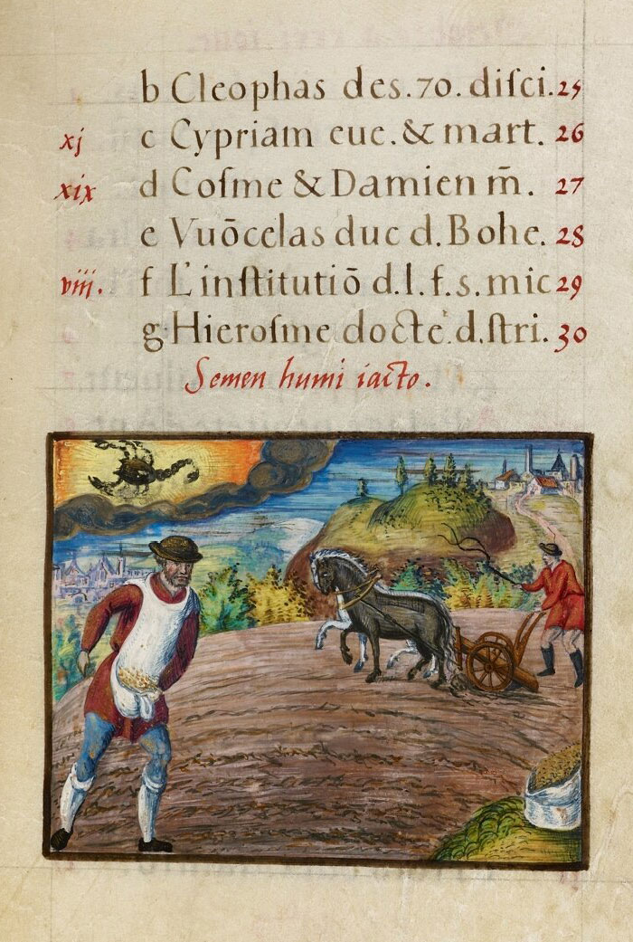 Illuminated Manuscript: Calendar