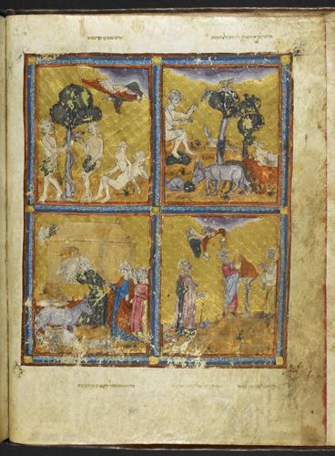 Scenes from Genesis