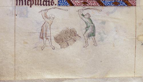 Men threshing corn