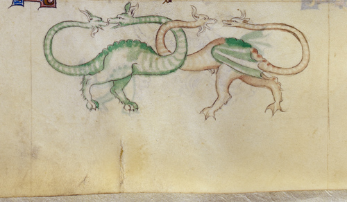 Grotesque dragons