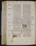 Anetum (Anise) and Anciptiter (Bird of pray)