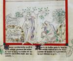 Moses the shepherd