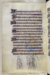 Saturninus and Sisinnius