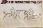Women jousting