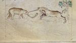 Unicorn and elephant