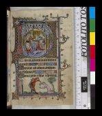 Nativity and martyrdom of Anastasia