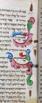 Foliate scrolls