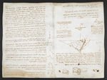 f. 75, displayed as an open bifolium with f. 76v: diagrams