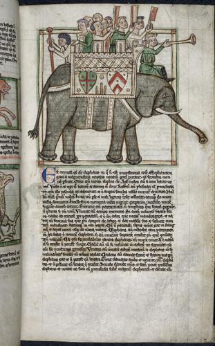 Men mounted on an elephant
