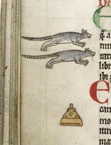 Rats of Ferneginan