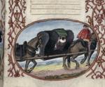 Horse-drawn litter