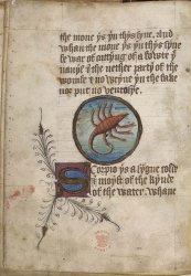 Sloane MS 3526, f. 5v
