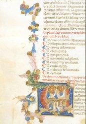 Egerton MS 2835, f. 35v