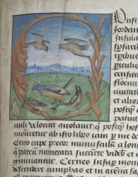 Arundel MS 93, f. 129